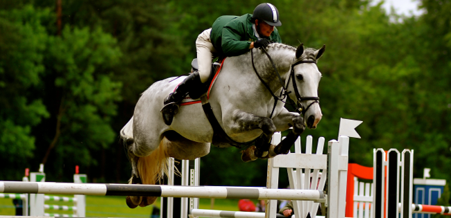 Ballinamona Equestrian Centre Waterford